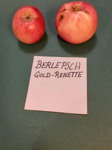 Apfelsorten021