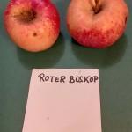 Apfelsorten022